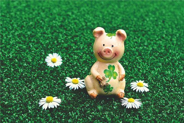 属猪2021年运势及运程 属猪人2021全年每月运程